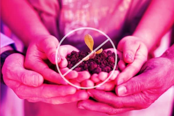 no plants in hands